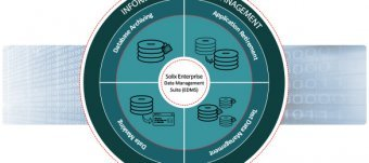 Enterprise Information Lifecycle Management practices