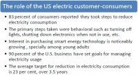 The role of the US electric customer-consumers